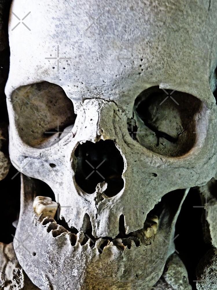 Skullduggery by Kim Slater