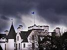 Scottish Castle by Carol Bleasdale