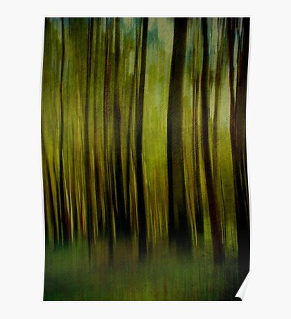Night falls on the Forest Poster