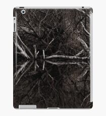 Willow and Water 2 iPad Case/Skin