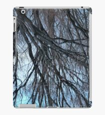 Winter Willow iPad Case/Skin
