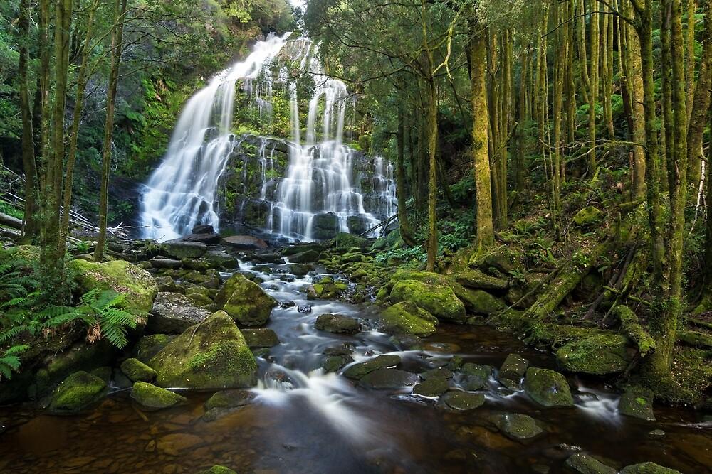Nelson Falls, Tasmania by Andrew Goodall