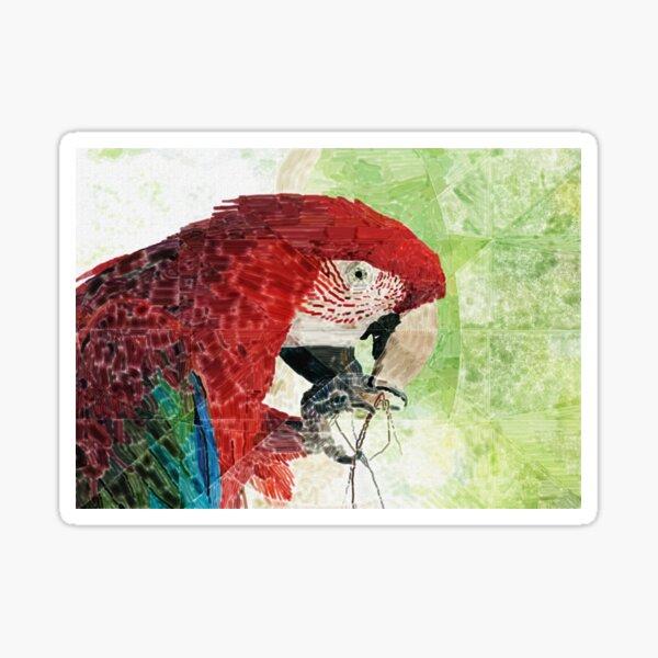 HC 003 Macaw Sticker