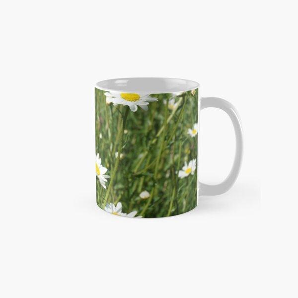 Oxeye Daisies Classic Mug