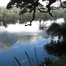 Mirror lake in the Morning - New Zealand  by Louise Linossi Telfer
