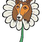 Collie-Blume von Brett Gilbert