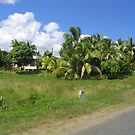 Scenery Fiji by Camelot