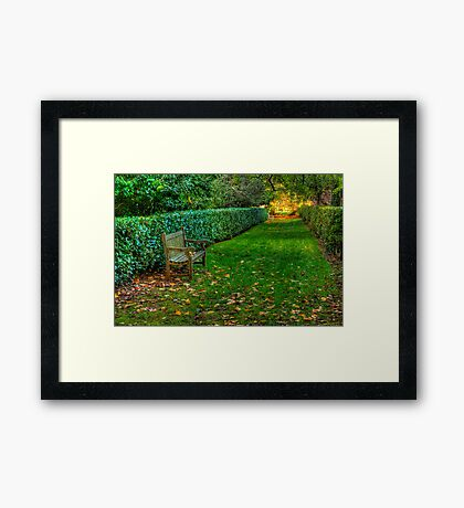 Contemplation Point - Nooroo , Mount Wilson, The HDR Experience Framed Print