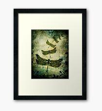 Fly, Fly Away! Framed Print