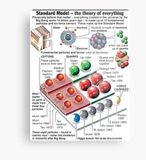 Physics Standard Model Theory  Metal Print