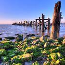 Low Tide by Joel Hall