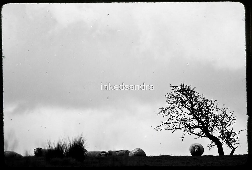 Beyond the horizon by inkedsandra