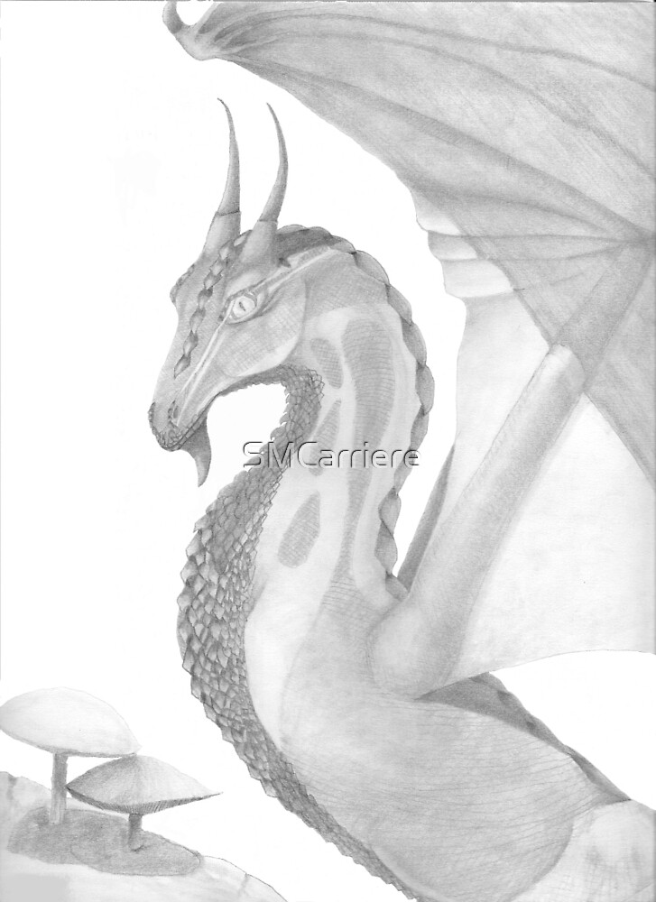 Young Dragon by SMCarriere