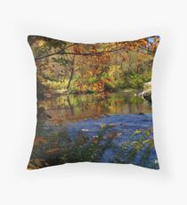 Northwest Pennsylvania Creek in Autumn Throw Pillow