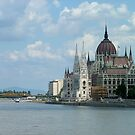 Hungarian Parliament, Budapest by Lisa Williams