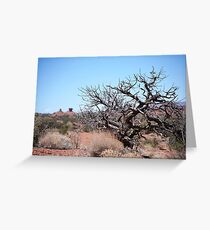 Life and Death in the Utah Desert Greeting Card