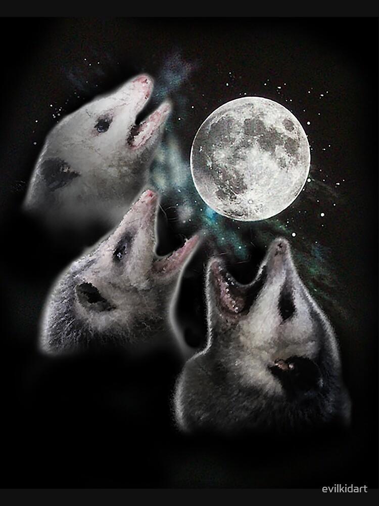 3 Opossum Moon by evilkidart