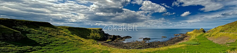 On the way to Giants Causeway by Zokakelt