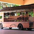 Bula Bus Fiji by Camelot