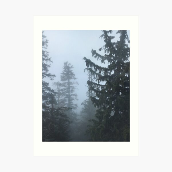 Grouse Mountain - A photograph of misty pine trees from Grouse Mountain in Vancouver, Canada Art Print