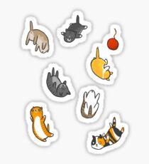 Kätzchen Regen Sticker