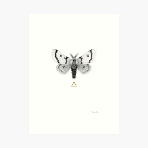 Moth to the Flame - Gold Leafed Graphite Drawing of a Moth Art Print
