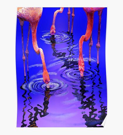 Flamingo Rhythms Poster