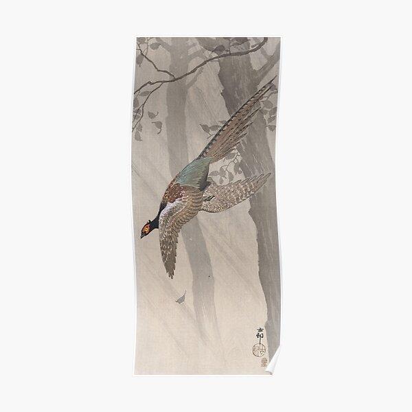 Green pheasant by Ohara Koson Poster