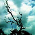 Holy Ghost Vector by chrissylong