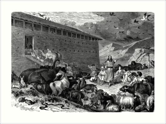 Noahs ark by marmur