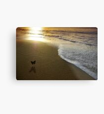 Butterfly on the sea Metal Print