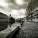 Paris, Quais de la Seine by laurentlesax