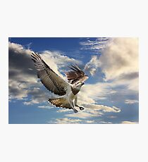 I Can Fly Photographic Print
