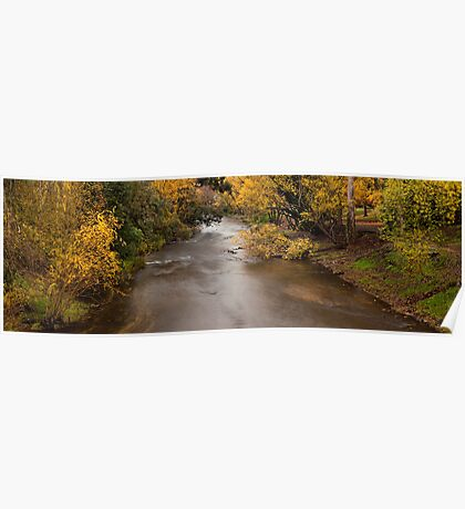 Ovens river - Bright Poster