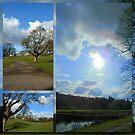 Callendar Park by ©The Creative  Minds