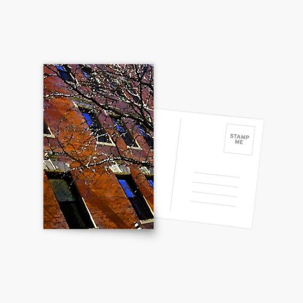 Bacon hill brick Postcard