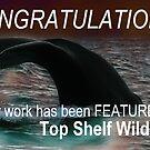 Top Shelf Wildlife Banner by Ian Sanders