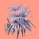 Palm trees 03 by youdesignme