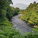 Strid View by Kat Simmons