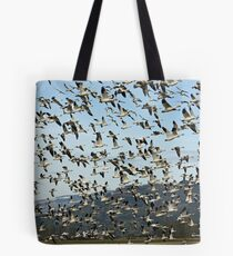 Ordered Chaos Tote Bag