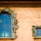 Two Windows by Mick Burkey