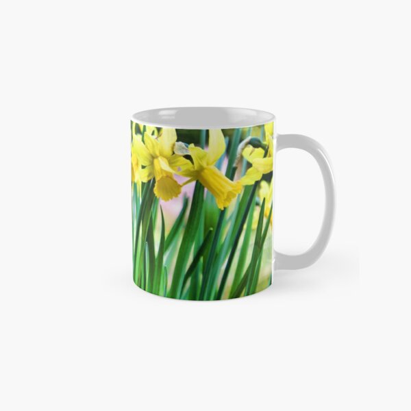 Daffodils for the Love of Spring! Classic Mug