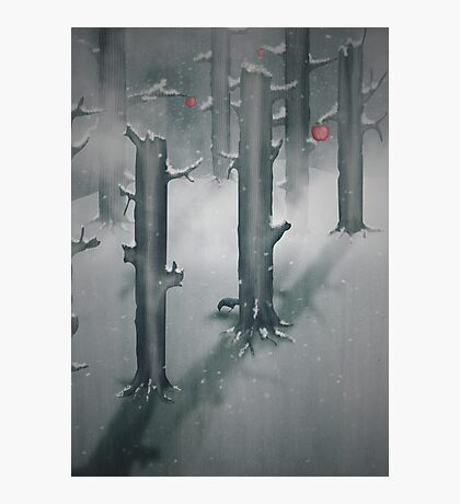 The Woods in Winter Photographic Print