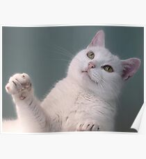 Talk to the Paw!!  Poster