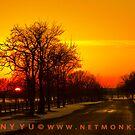 :::Sunset::: by netmonk