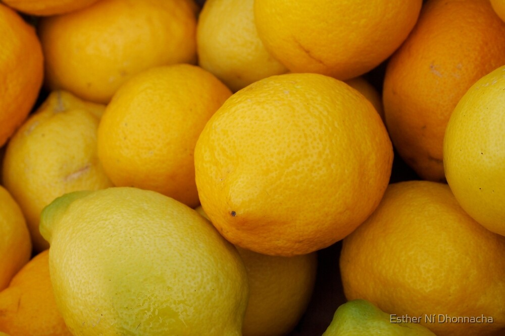 When Life Gives You Lemons by Esther Ní Dhonnacha