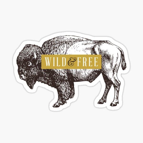 Wild & Free (Bison) Sticker