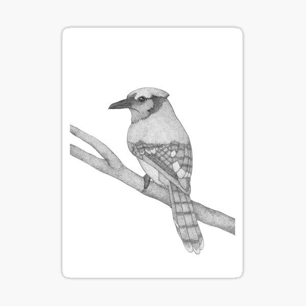 A bird named Hans Sticker