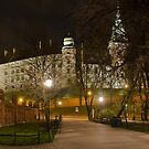 Wawel pano. by BrainCandy