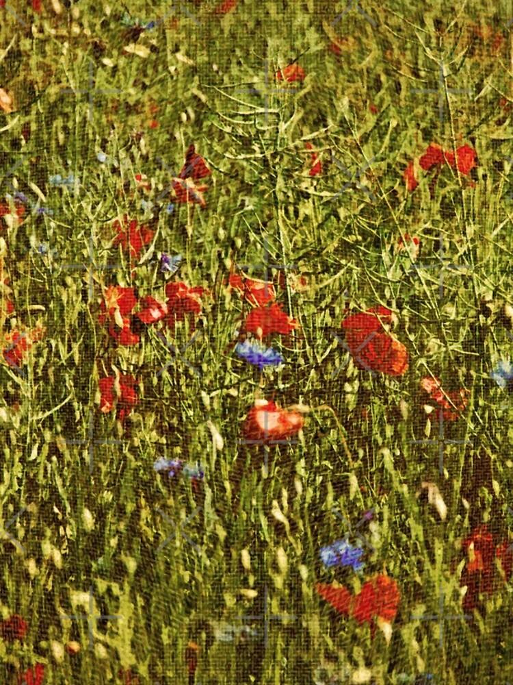 Sommerfeld mit roten und blauen Blumen von pASob-dESIGN